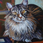 Main Coon Cat - Oil