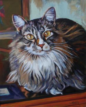 Main Coon Cat Oil Pet Portrait