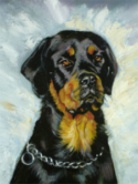 Max - Detail of Head and Chest Oil Pet Portrait