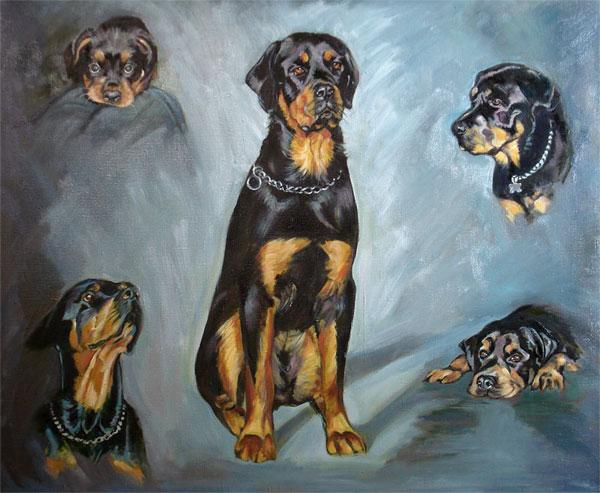 Max - Five Views Oil Pet Portrait