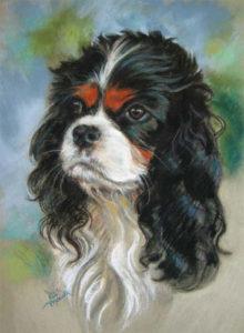 Robbie Pastel Pet Portrait